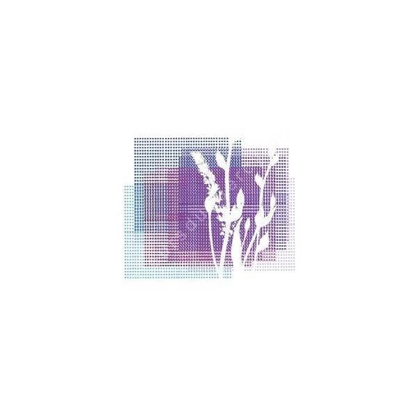 Collection d'iris violet