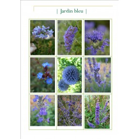 Collection jardin bleu