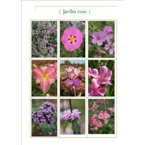 Collection jardin rose