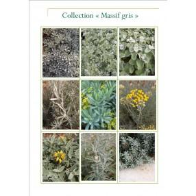 Collection jardin gris