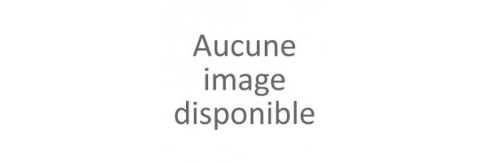 Pennisetum - Herbe aux écouvillons