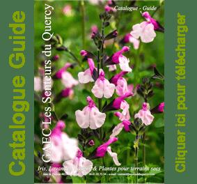 Catalogue - Les Senteurs du Quercy